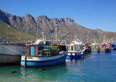 Hout Bay Harbour — Stock Photo