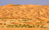 Empty Quarter Wadi — Stock Photo