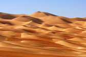 Empty Quarter Landscape — Stock Photo