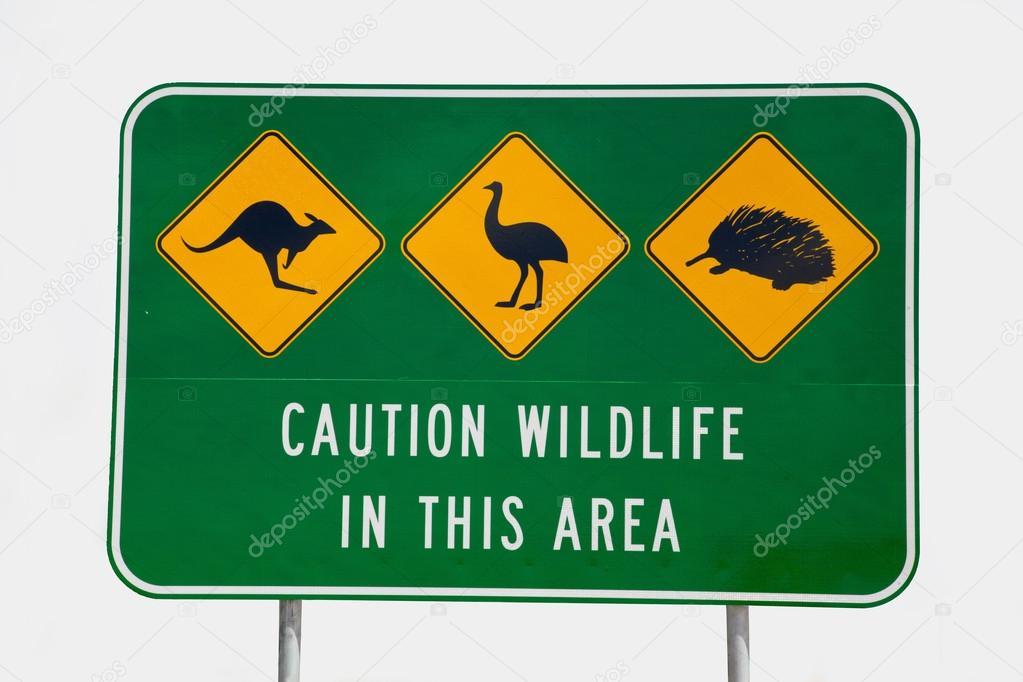 澳大利亚野生动物标志