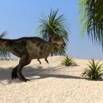 Постер, плакат: Tyrannosaurus t rex