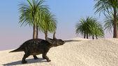 Diceratops dinosaur — Stock Photo