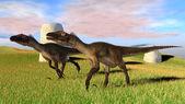 Utahraptor dinosaurs — Stock Photo