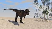 Tyrannosaurus t-rex — Stock Photo