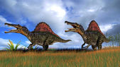 Spinosaurus dinosaurs — Stock Photo