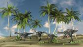 Gigantoraptor dinosaurs flock — Stock Photo