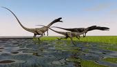 Dinosaurs coelophysis — Stock Photo