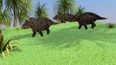 Diceratops dinozorlar — Foto de Stock