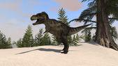 Prehistoric Tyrannosaurus t-rex — Stock Photo