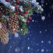 Christmas tree covered with snow on the blue night sky, xmas bac — Stock Photo