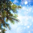 Art Christmas tree branch and snow fall — Stock Photo #14692081