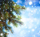 Art Christmas tree branch and snow fall — Stok fotoğraf