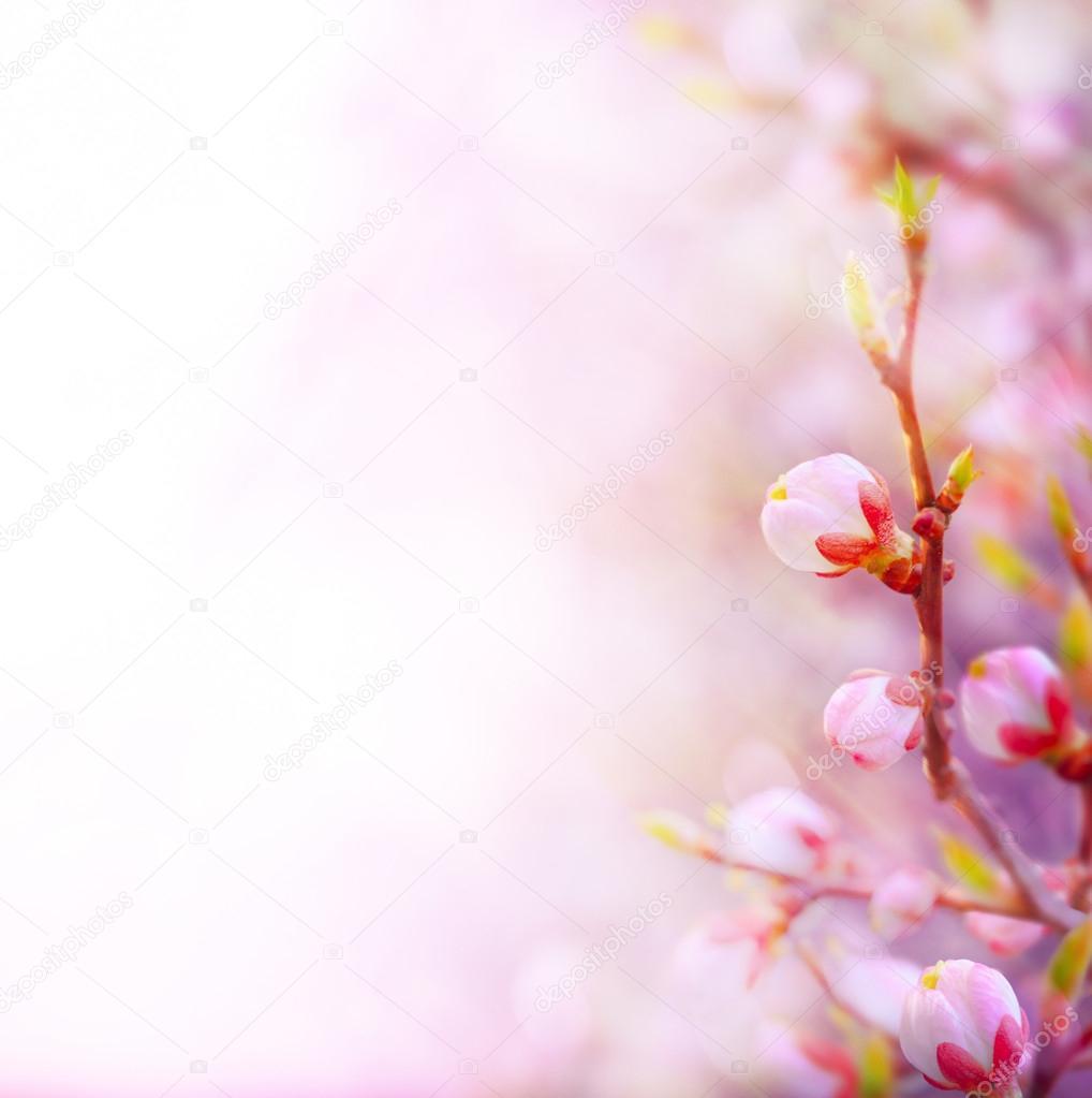 Картинки для фона о весне