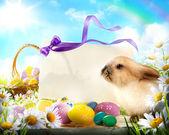 Conejo de pascua y los huevos de pascua — Foto de Stock