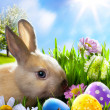 Art Little Easter bunny and Easter eggs on green grass - Zdjęcie stockowe