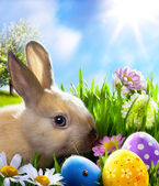 Art Little Easter bunny and Easter eggs on green grass — 图库照片
