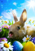Art easter Baby rabbit and easter eggs — Stock Photo