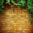 Art Tree in pot with brick wall background — Stock Photo #24154157