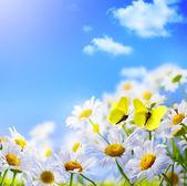 Våren bakgrund — Stockfoto