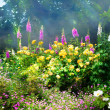 Art flowers in the morning in an English park — Stock Photo #28058269