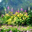 Art flowers in the morning in an English park — Stock Photo #28058279