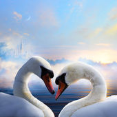Art pair of swans in love floating on the water at sunrise of th — Stock Photo