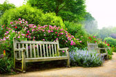 Art flowers in the morning in an English park — Stock Photo