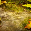Art autumn leaves on old wood background — Stock Photo