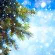 Art Christmas tree branch and snow fall — Stock Photo