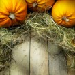 Art thanksgiving pumpkins autumn background — Stock Photo #31111227