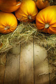 art thanksgiving pumpkins autumn background — Stock Photo