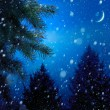Christmas tree on winter night blue snow background — ストック写真
