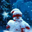 Christmas snowman and fir branches covered with snow — Stock Photo #32495647