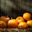 Stock Photo: Art autumn Pumpkin thanksgiving backgrounds