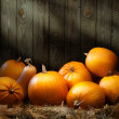 Art autumn Pumpkin thanksgiving backgrounds — Stock Photo #32495953