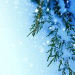 Art Christmas tree on snow background — ストック写真