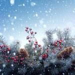Christmas tree background — Stock Photo #34402589