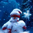 Christmas snowman and fir branches covered with snow — Photo