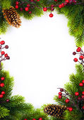 Art christmas frame with fir and Holly berry on white paper ba — Stock Photo