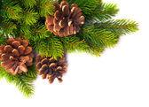 Art christmas tree frame — Stock Photo