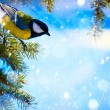 Stock Photo: Art Christmas card with tits on Christmas tree and snow
