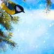 Stock Photo: Art Christmas card with tits on the Christmas tree and snow