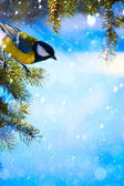 Art Christmas card with tits on the Christmas tree and snow — Stock Photo