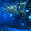 Christmas tree on night background — Stock Photo