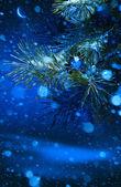 Christmas tree on night background — Stock Photo