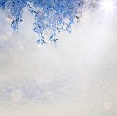 Art printemps texture fond sous la forme de la fonte des neiges avec un — Photo