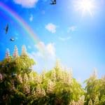 Art beautifu seaside view background — Stock Photo #41339047