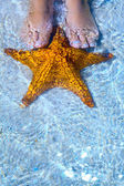 Art Beautiful female legs and starfish on the sea beach — Stock Photo