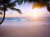 Art Beautiful sunrise over the tropical beach — Stock Photo