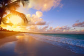 Art Beautiful sunrise over the tropical beach — Photo